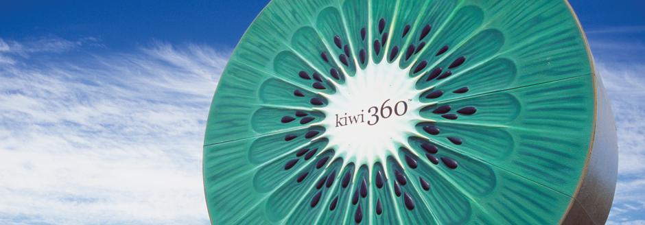 symbol of kiwi